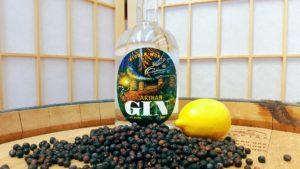 Guardian Gin